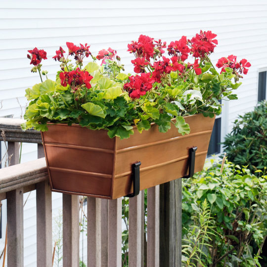 Window/Flower Boxes