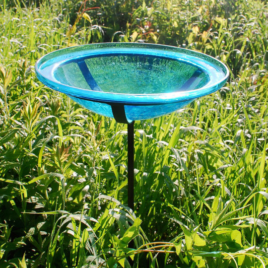 Birdbaths and Feeders